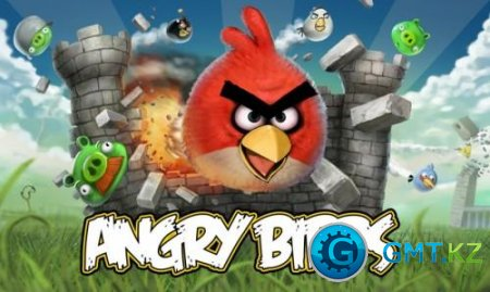 Angry Birds  2010 / RUS /L