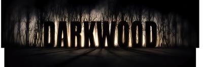 Darkwood v.1.3a (2017/RUS/ENG/GOG)