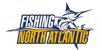 Fishing: North Atlantic (2020/RUS/ENG/RePack от xatab)